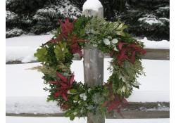 Fresh Christmas Wreaths