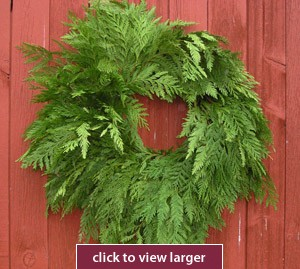 Cedar Christmas Wreath