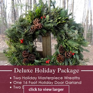 Deluxe Holiday Package