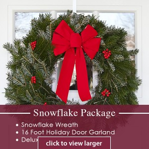 Snowflake Package