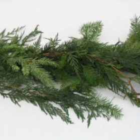 Douglas Fir and Cedar Garland