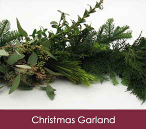 Fresh Christmas Wreaths.Free Delivery Christmas Trees Wreaths Garland Fresh